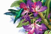 Floral Magic