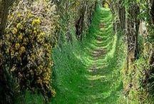 Charming places / ¿Quién no sueña con un sitio mágico?