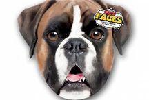 Kissen Pet Faces