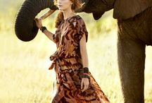 SAFARI / Get Wild / by Gresso Luxury