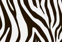 Elite - Animal Print / Qualidade, requinte e sofisticação em papéis de parede para decoração!  Papéis de parede auto adesivos impresso em qualidade HD, sempre pensando em trazer mais estilo para seus projetos e mais vida para seus ambientes.   Papel de parede vinílico. Tamanho: 0,56 x 2,80 M Área: 1,568 M²