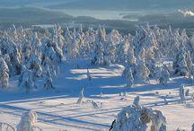 Skiferie og ski outfits / Find inspiration og tips til ski, snowboard, ski mode og outfits, hundeslæde. Find inspiration and information for skiing, snowboarding, dog sledding and skiing outfits.