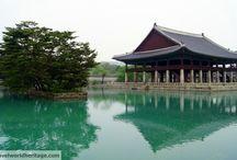 Travel Inspiration: South Korea