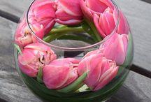 kwiaty-ozdoby