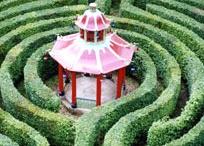 Labyrinths,mazes and spirals. A spiritual walk......