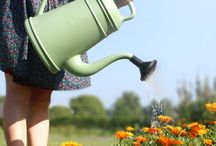 Tuin / In de tuin kan je ook helemaal los gaan met mooi design of aparte decoraties.