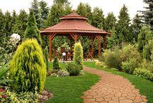 OGRODY / pomysły na ciekawy ogród