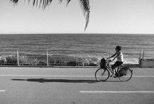 CyclingRiviera / Cycling Riviera è il parco costiero della Riviera dei Fiori che attraversa i comuni di Ospedaletti, Sanremo, Taggia, Riva ligure, Santo Stefano al Mare, Cipressa, Costarainera, San Lorenzo al Mare. La pista ciclo-pedonale sul mar Ligure più bella d'Europa, con punti ristoro, bike sharing e con una ricchezza floreale unica al mondo. La Pista Ciclo-Pedonale del Parco Costiero Riviera dei Fiori è situata sui 24 km della vecchia linea ferroviaria che dal 1872 al 2001 ha servito il Ponente Ligure.