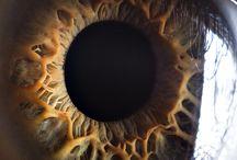 Cool Eye Photos