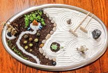 ZEN Gardens & Succulents & Bonsai