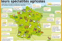 Les spécialités régionales