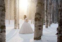 Winter Wonderland / by Molly Marie Photography