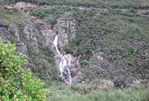 Caminomorisco / Uno de los principales pueblos de las Hurdes es Caminomorisco. Está rodeado por un bonito paisaje agreste que en parte estropeo el ICONA con el monocultivo de pino. Se encuentran en varios parajes restos líticos, ídolos vetones, cascadas, profundos tajos, alquerías...