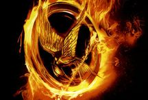 Books Worth Reading / The hunger games (part I of trilogy) - Suzanne Collins