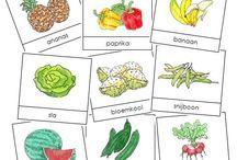 Thema: Groente en fruit