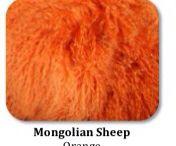 Mongolian sheep hides