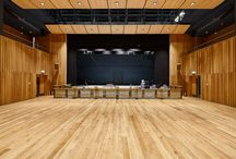 Ibstock Place School Project / A selection of our acoustic wood products were specified for the new development at Ibstock Place School and installed by our team.   The new Theatre features our RPG Flutterfree T Oak in matt lacquered finish, this is used on ground floor walls up to 4m, as well as the balcony, orchestra lift and proscenium.  We also installed Lambri microperforated timber wall panels, Soundtrac stretch fabric panels and for the ceiling, RPG Waveform Monoradials in Oak.