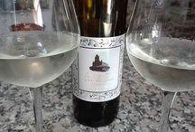 Vinos de Asturias - Vinos de Cangas / Vinos elaborados en el Principado de Asturias.
