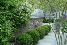 Small urban garden / Design by Ruth Willmott shows what is possible in a 8m x 5m space.