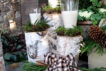 Ideas using birch logs