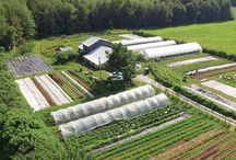 All in one acre