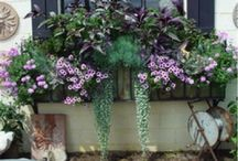 great garden pots / gardening / by Shelly Mc
