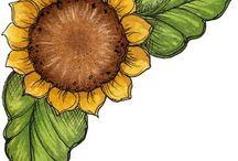 Flores / Diseños varios
