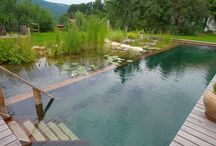 Pools, Ponds and Patios / by Jude Boudreau