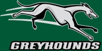 'Hounds / by Loyola Greyhounds