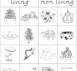 Montessori Science - Botany & Zoology