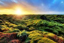 Landschap fotografie / De mooiste Landschappen, en natuur weergegeven in weergaloze fotografie.