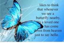 "BUTTERFLIES / ""Butterflies are the symbol of metamorphosis. Transforming your life from the inside out""."