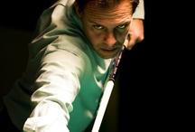 Biliardo - Giocatori Famosi / iI più prestigiosi giocatori di biliardo.