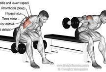 Ώμοι workout