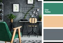 colour palette for home
