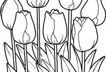 Plantillas de tulipanes
