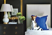 Luxe | Pets / There's nothing better than coming home to the people—and the pets—that you love.