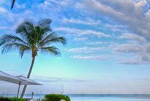 Florida bound / by Debbie Formica