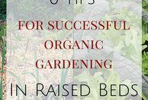 Raise garden bed