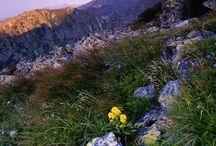 Krivan peak Slovakia