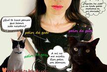 Columnas Felinas / Editoriales y artículos de opinión de gatos, por gatos, sobre gatos. Lecturas divertidas para pinear ahora y leer cuando tú quieras.