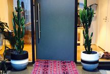 Event Plants / Plants defining spaces at your next event
