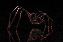 Spider - glassy type / Spider - glassy type, #3dspidermodel, #spider