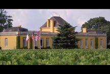 Vidéo Château Lafon-Rochet / La naissance d'un vin - Part 1 La Terre des Hommes - Part 2