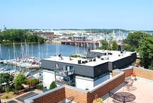 May 2016 Availability / Fully furnished temporary rentals in Annapolis