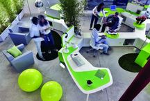 Eco Friendly Offices
