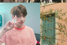BTS Aesthetic / Aesthetic: A combination of things that are pleasing to look at.