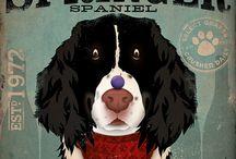 English Springer Spaniel / by Karla de Oliveira