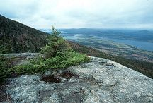 Maine Backcountry Camping / A wish list of backcountry spots in Maine. Did we miss something? Let us know at info@bushsmarts.com