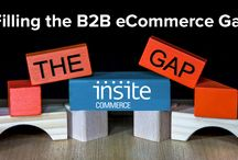White Papers / Filling the B2B eCommerce Gap